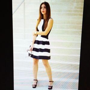 Eva Franco Black Strata Fit & Flare Dress
